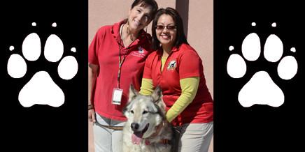 Stephanie and Hokshila pose with Suzanne of PFGW