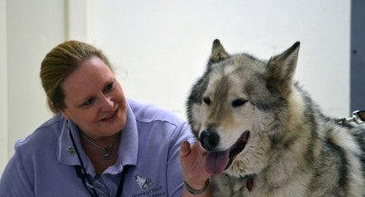 Wanagi Volunteer Andrea Westwood with Hokshila